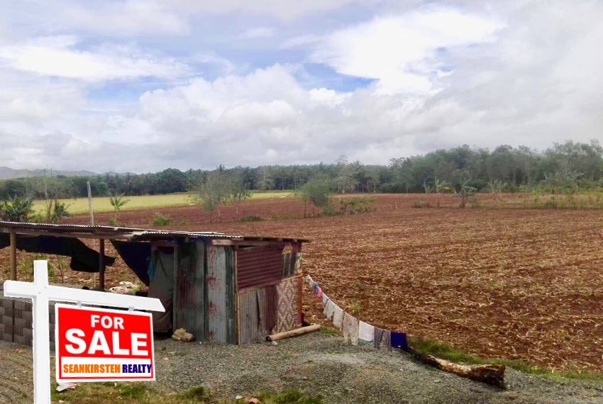 1sale_Malaybalay_seankirsten_realty