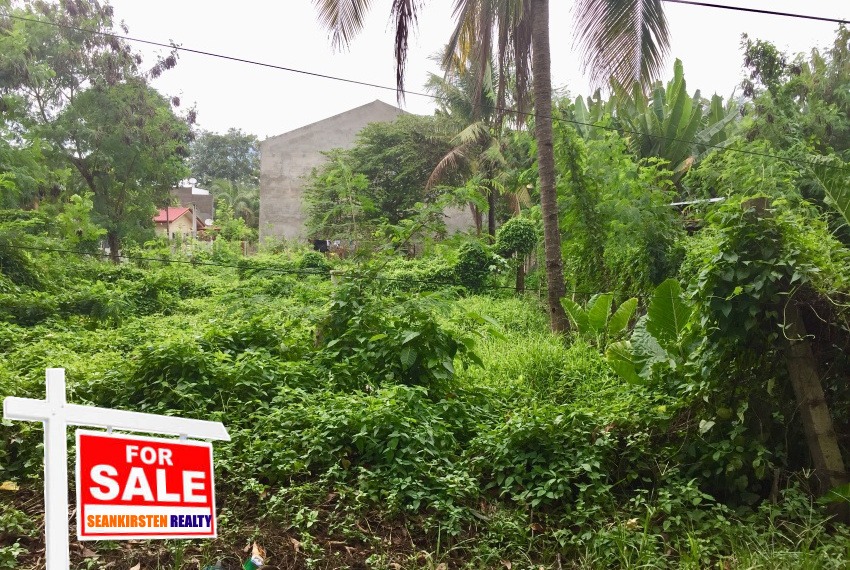 1000sqm lot for sale in bulua